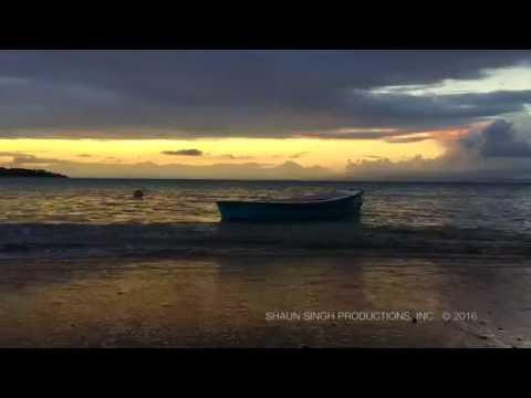 "Amazing Sunset to Zayn ""Intermission: FLower"""