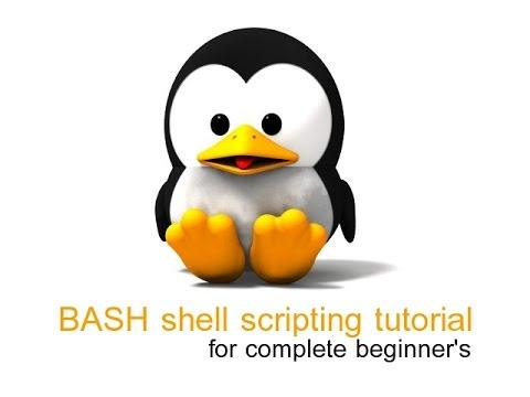 Short Bash Scripting Tutorial