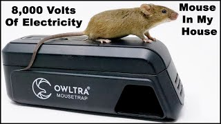 8,000 Volts Of Electricity End A Mouse Home Invasion. The OWLTRA Infrared Trap.  Mousetrap Monday