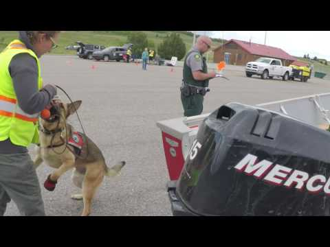 Alberta Environment & Parks   Conservation K 9 Unit