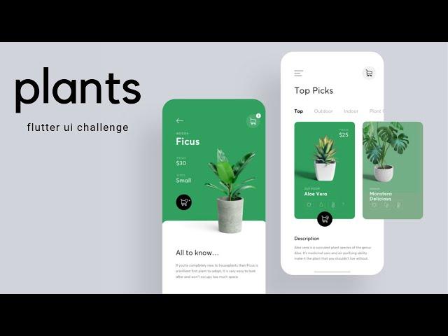 Flutter UI - Minimal Designs - Plants