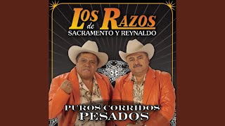 Watch Los Razos El Paniquiado video