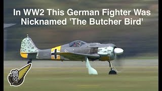 Focke Wulf FW-190A/N - Luftwaffe Fighter