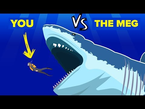 YOU vs THE MEG - How Can You Defeat and Survive It The Meg Shark Movie