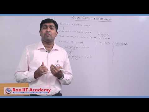 Peripheral & Autonomic Nervous System - NEET AIPMT AIIMS Zoology Video Lecture [RAO IIT ACADEMY]