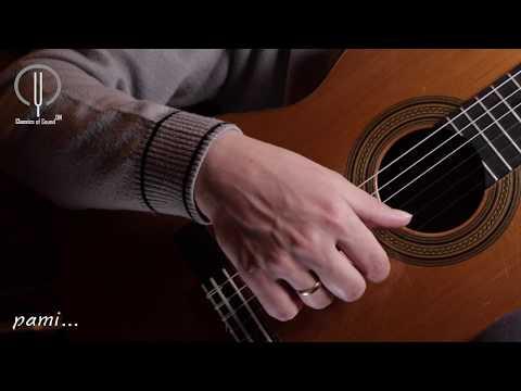 Уроки игры на гитаре с нуля для начинающих. Урок 1 Часть 1. Видеоуроки игры на гитаре для начинающих