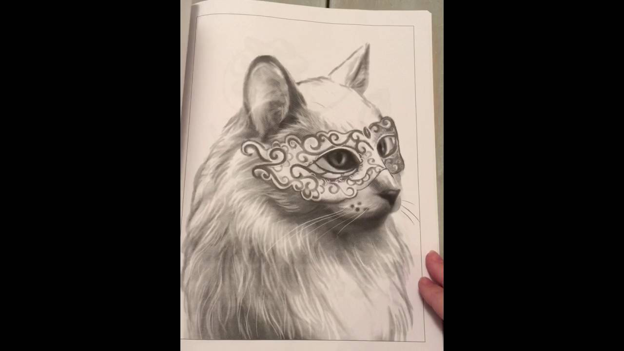 Funny animals coloring book by Jennifer Shaffer Art