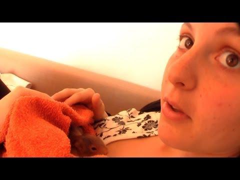 Injured Baby Squirrel DITL