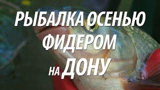 Рыбалка на Дону на фидер. Ловля рыбы подуст осенью(Узнайте из видео, как проходила рыбалка на Дону на фидер. Ловля рыбы подуст на реке Дон осенью на течении..., 2016-09-29T10:00:03.000Z)