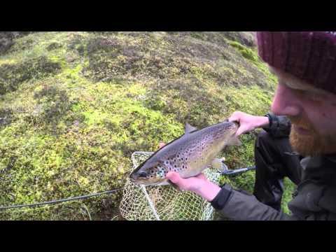 Shetland Trout Fishing 2015