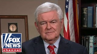 Gingrich: The hardcore left believes things that I think are crazy