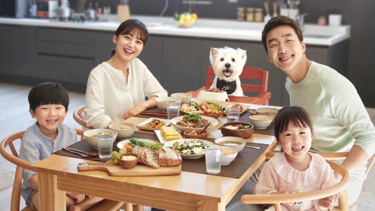 강아지까지 행복한 시저 가족식사 - YouTube