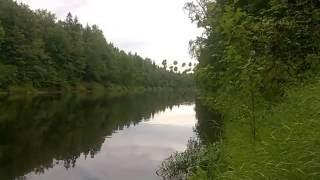 Река Керженец. Леса Семеновские. Лето. Отдых.