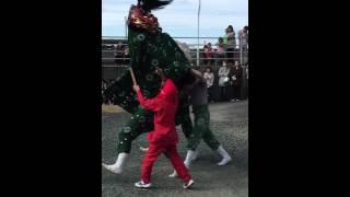 秋祭り 獅子舞 愛媛県大洲市長浜町出海 平成27.10月11日.