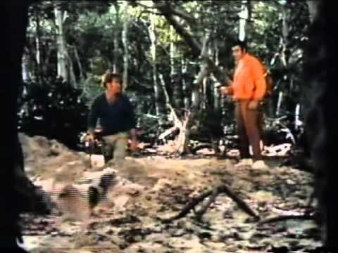 Random Movie Pick - Darker Than Amber 1970 William Smith YouTube Trailer