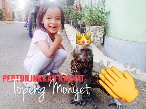 Zara nonton topeng monyet keliling / monkey show / pertunjukkan rakyat