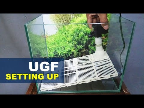 Setting Up Undergravel Filter Nano Tank Aquascape
