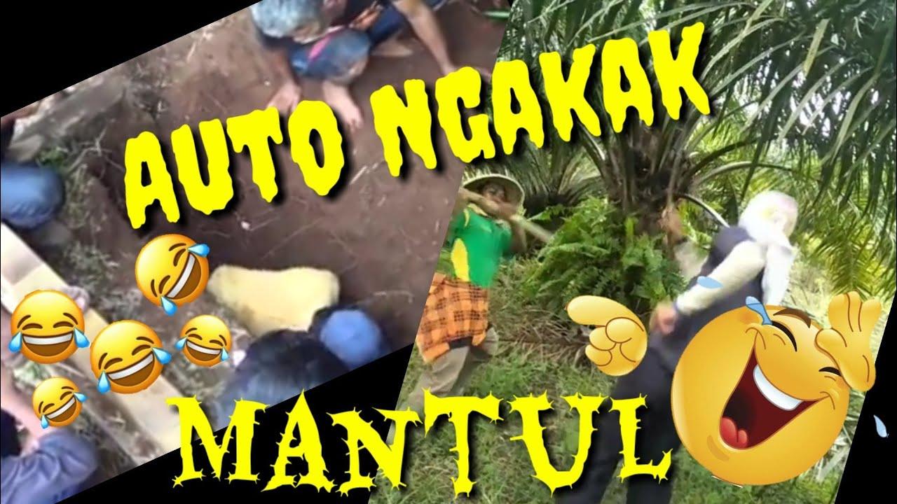 Virall 11 Video Lucu Bikin NGAKAK MANTUL