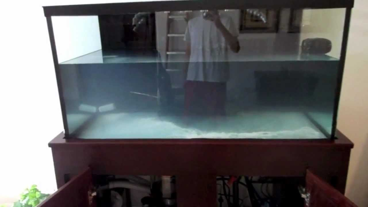 120 Gallon Saltwater Tank 1 Equipment And Future Plans