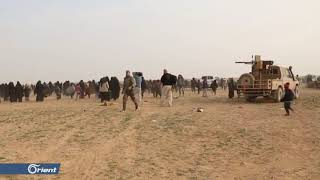 نساء داعش يشاركن بمعارك الباغوز شرق دير الزور - سوريا