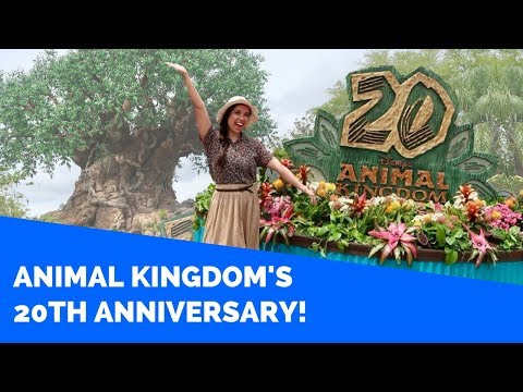 ANIMAL KINGDOM'S 20TH ANNIVERSARY! || Disney Professional Internship Vlogs