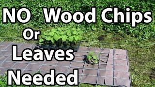 Organic Gardening 101 for Beginners - Easy Solution to Back to Eden Gardening Method Tips