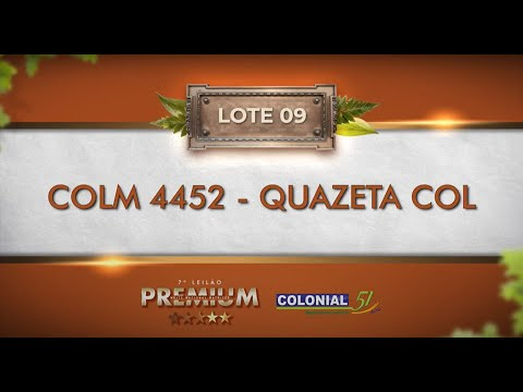 LOTE 09   COLM 4452