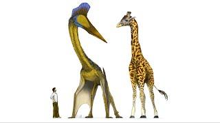 Do Dinosaurs Pose a Gravity Problem? | Space News