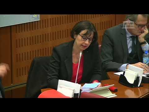 Commission enquête 11 février 2020