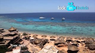 Sharm Cliff Resort 4* (Шарм Клифф Резорт) - Sharm El Sheikh, Egypt (Шарм-эль-Шейх, Египет)(Смотреть целиком: http://lookinhotels.ru/af/egypt/sharmelsheikh/sharm-cliff-resort-4.html Watch the full video: ..., 2014-01-28T20:16:54.000Z)