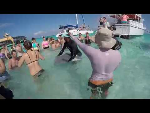 Carnival Vista Cruise #5 - Stingray City