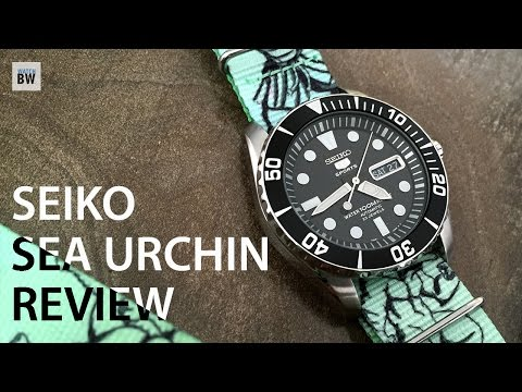 Seiko Sea Urchin Review SNZF17 Affordable 5 Sports Beater