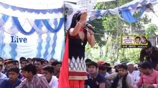 Dhamake Dar Hit New Song ,Chogrde te Bag Hrya,Preeti Choudhary ,By Harsh Preeti Cassettes