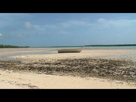 Bahamas (i Viaggi de Il Mondo Insieme)