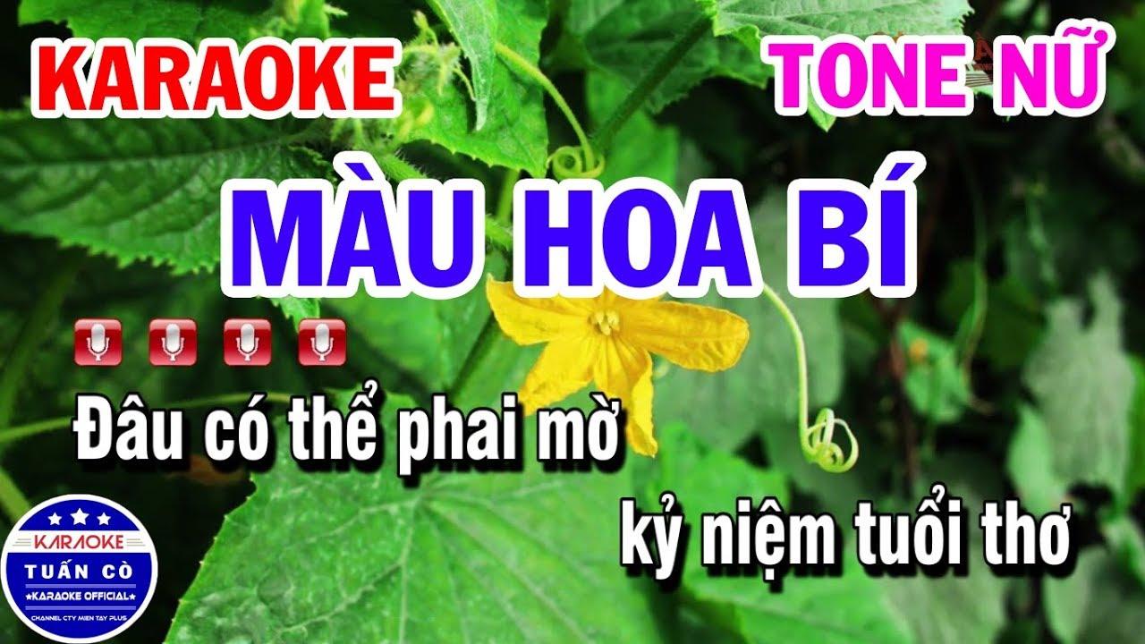 Karaoke Màu Hoa Bí Tone Nữ Em | Nhạc Sống Tuấn Cò