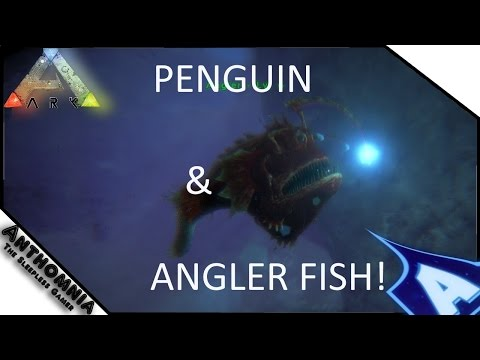 Full download ark survival evolved news update 7th for Angler fish ark