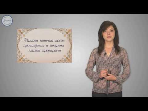 Уроки русского Простое предложение