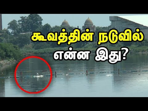 Do you know about Trash Boom | Trash Boom in Cooum River