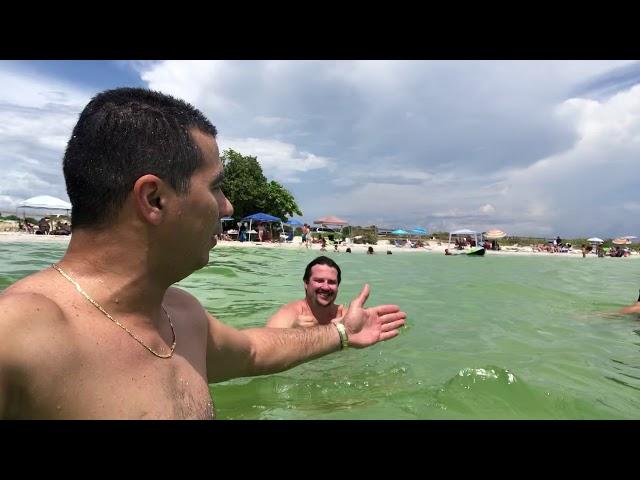 ClearWater Beach e Honeymoon Island próximo a Tampa na Flórida são praias maravilhosas!