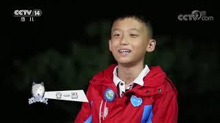 《快乐体验》 20200611 小勇士训练营|CCTV少儿