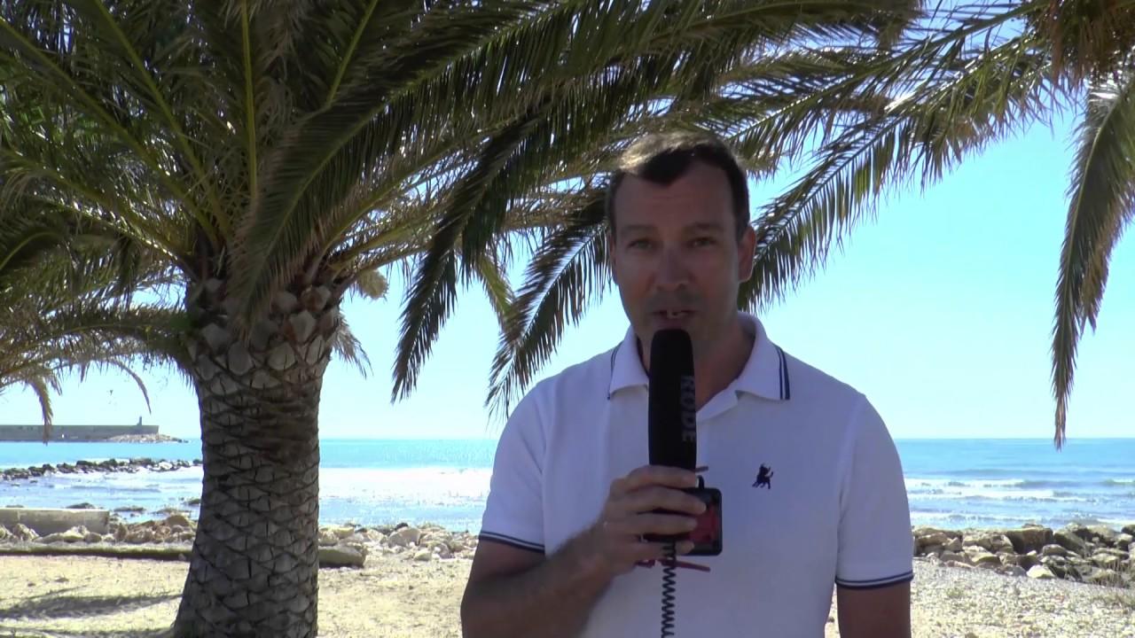 seznamka palm beach