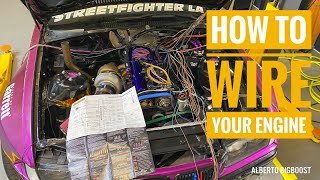 homepage tile video photo for 2JZ VVTI BMW E36 HALTECH ELITE 2500  INSTALL everything you need to know