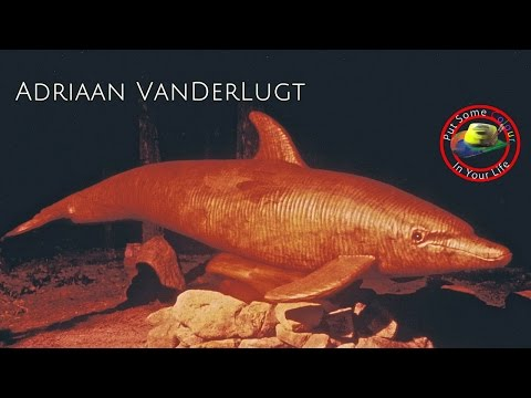 Fine art tips on How to Sculpt in Marble and Wood with Adriaan Vanderlugt on Colour In Your Life