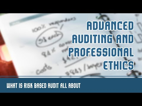 Special Audits | What is Risk Based Audit all About | Risk Assessment | Part 1