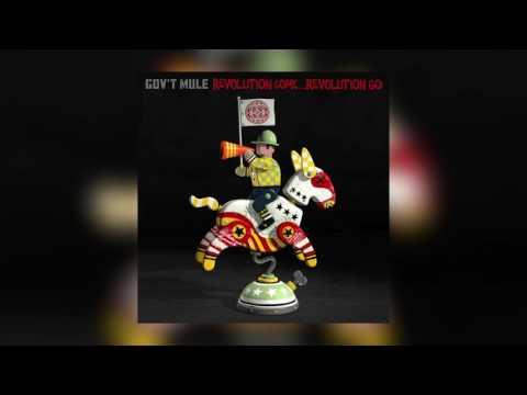 Gov't Mule -