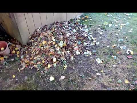 5 Kubikmeter Kompost 25 im Back to Eden Garten verteilt