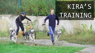 Bikejoring by Kira, Asha, Fray, Rodos, Jerry, Pako @ Yunist Stadium (Lviv, 28.09.13) Download