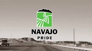 NAPI Stores