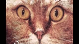 Coyu & Ramiro Lopez - Y.E.A.H. (Original Mix) [Suara]