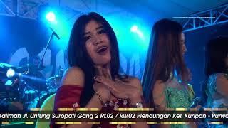 Download Video Suket Teki Riana Miyabi New Bintang Samudra Terbaru Live Plendungan Purwodadi 2018 MP3 3GP MP4